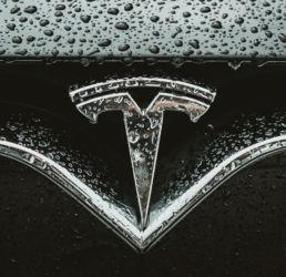 Tesla logo nat